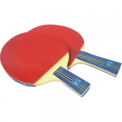 Double Fish Pimples in Ping Pong Racquet